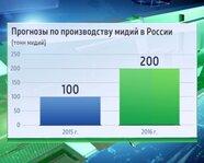Прогнозы по производству мидий в России