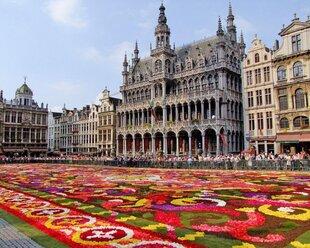 Жители Бельгии получат таблетки от радиации