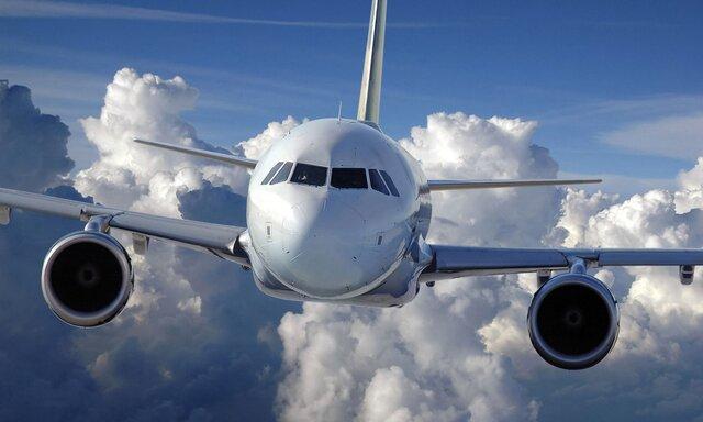 Русские авиакомпании задевять месяцев сократили транспортировки пассажиров на8%