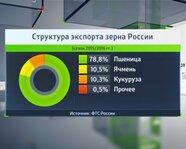 Структура экспорта зерна России
