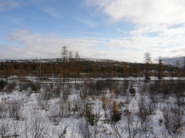 Реализовано крупнейшее месторождение золота в Российской Федерации
