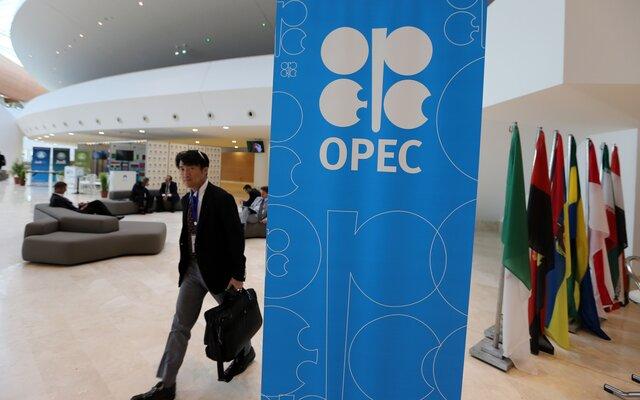 Все идет очень неплохо: генеральный секретарь ОПЕК осокращении добычи