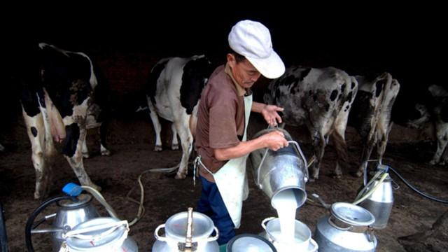 Акции China Huishan Dairy неожиданно рухнули на 85%