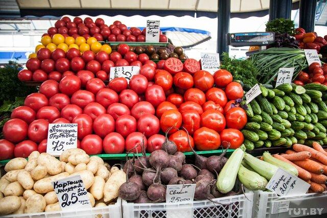 РФ непланирует восстанавливать поставки помидоров изТурции— Ткачев