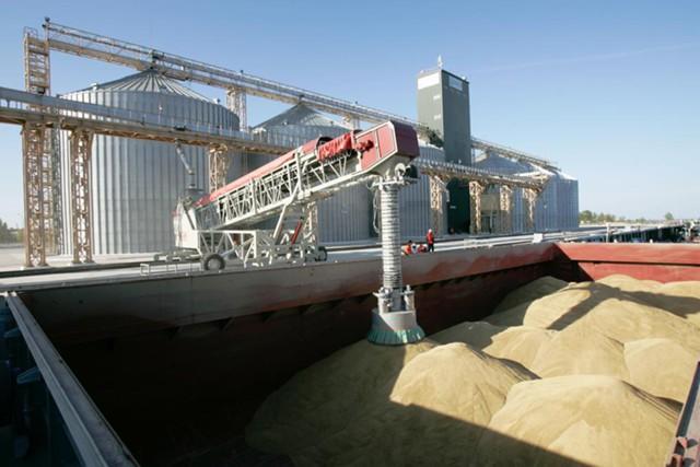 РФ теряет лидерство на рынке зерна из-за Турции