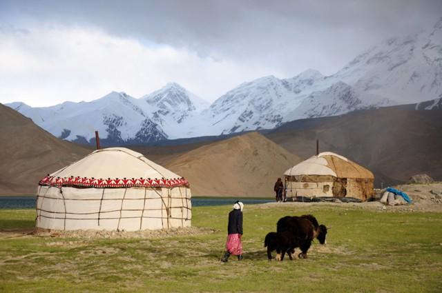 Мигранты Киргизии перевели из РФ $433 млн в I кв.