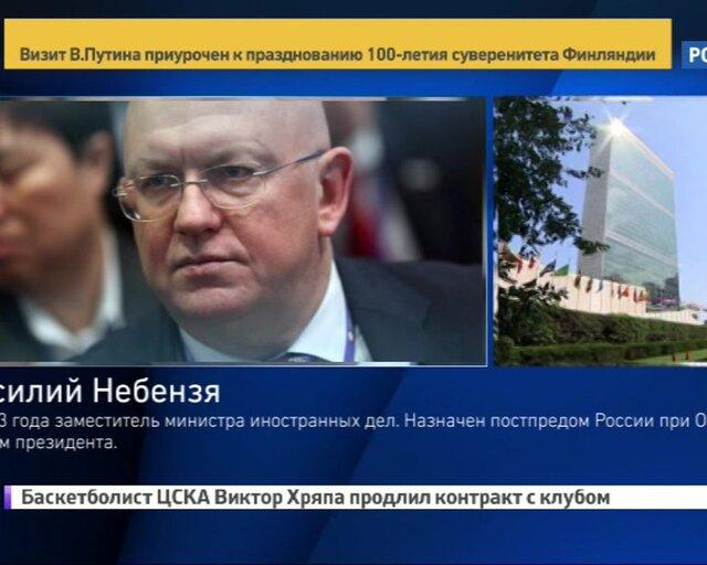 Василий Небензя. Профессиональный путь