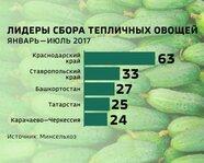 Лидеры сбора тепличных овощей