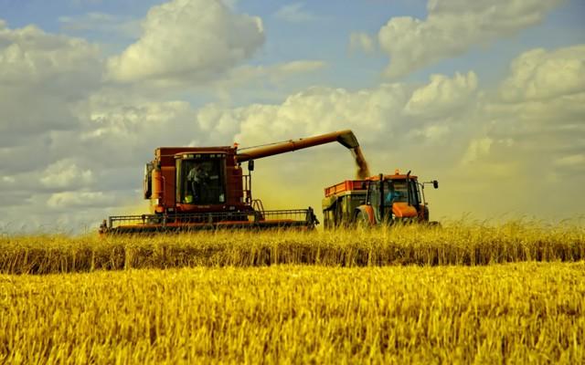 Аграриям дали 1,3 млрд для компенсации природных ЧС