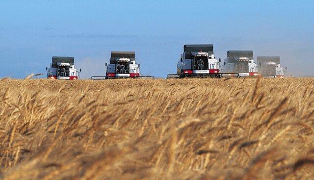 133 млн. тонн: Российская Федерация бьет «советский» рекорд урожая зерна
