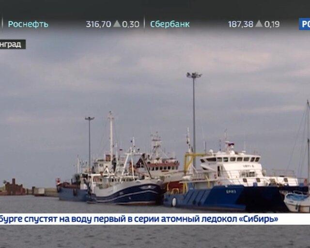 Тема региональных перевозок на примере Калиниградской области