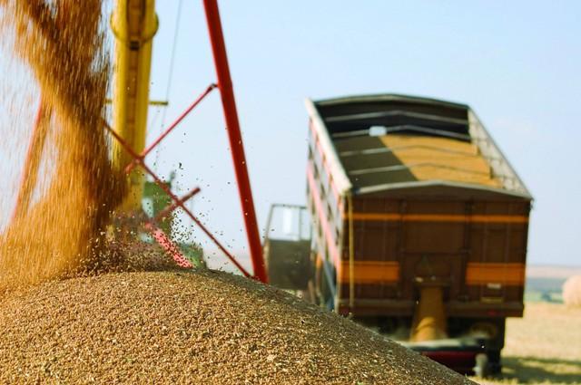 Медведев: к 22 сентября собрали 117 млн тонн зерна