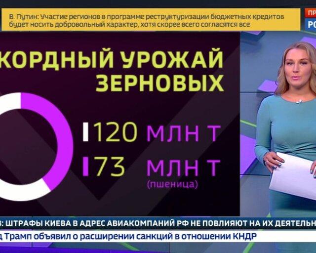Погоде вопреки: урожай зерна в России идет на новый рекорд