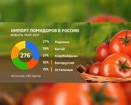 Импорт помидоров в Россию
