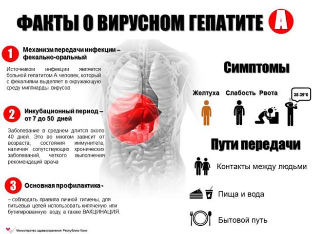 В РФ распространяются гепатит, корь и брюшной тиф