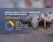 Оценка ущерба ЕС из-за ограничения поставок свинины в Россию