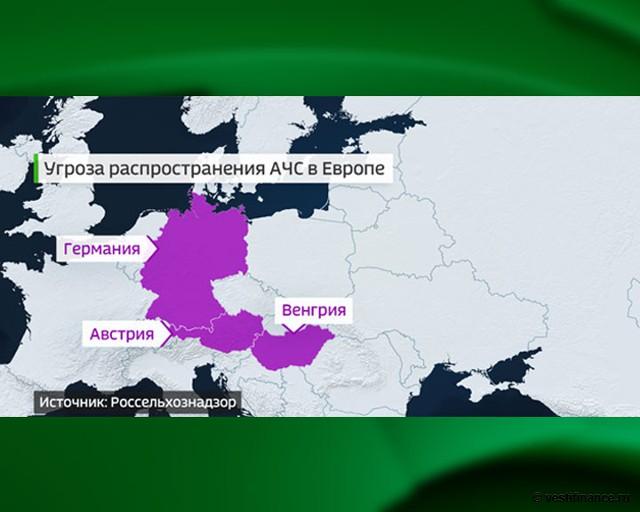Угроза распространения АЧС в Европе