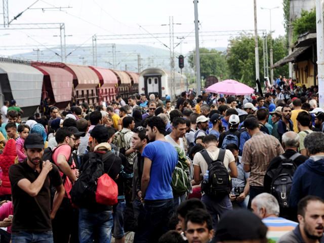 Бери и уходи - новый подход к беженцам в ЕС?