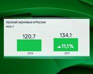 Урожай зерновых в России. 2016-17 гг.