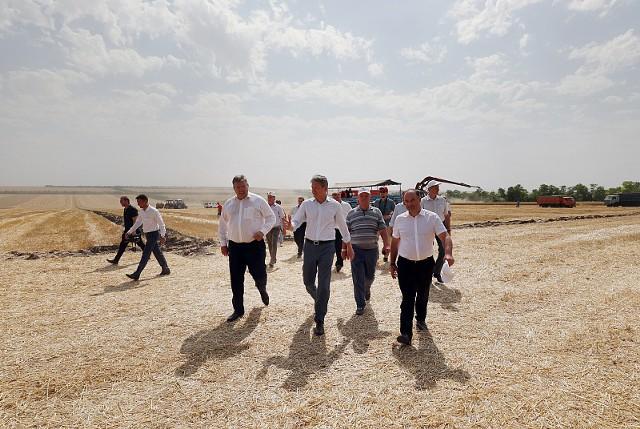 Прогноз: Россия опережает Украину по экспорту зерна