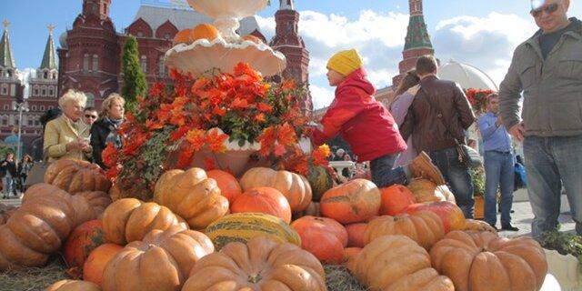 Минсельхоз расширил доктрину продовольственной безопасности РФ