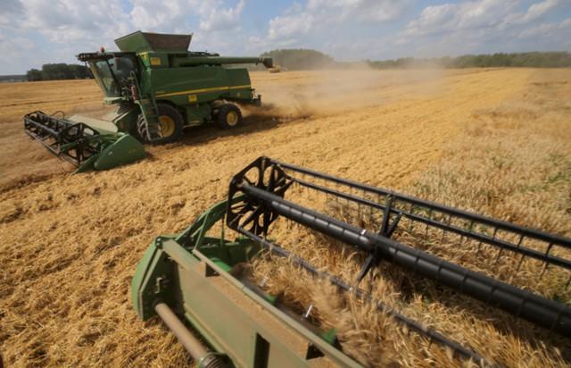 Иран хочет импортировать пшеницу из России