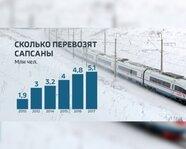 """Сколько перевозят """"Сапсаны"""": 2010-17 гг."""