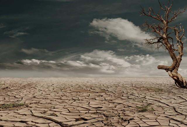 Война за воду: 5 млрд человек под угрозой