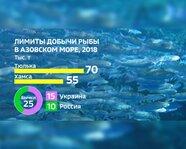 Лимиты добычи рыбы в Азовском море в 2018 году