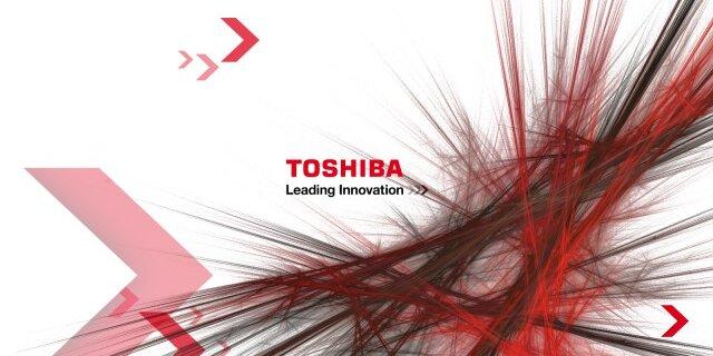 ...техники Toshiba совместно с компанией SanDisk Corp планирует построить завод по производству микросхем флеш-памяти.